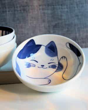Butchi Cat